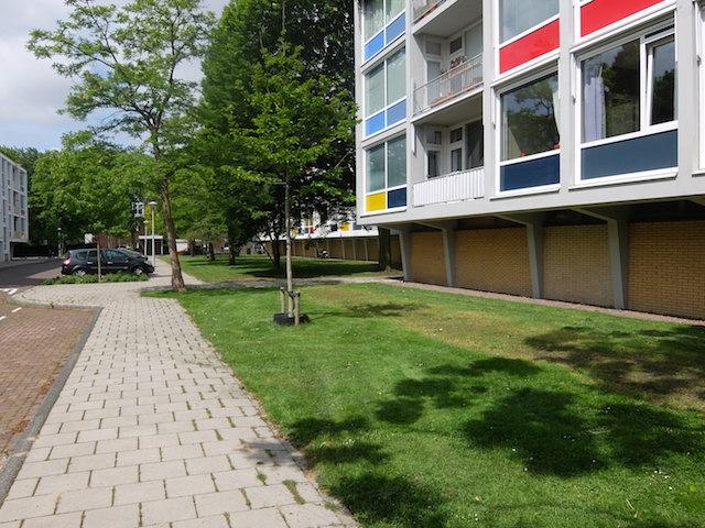 Dirk Schferstraat, Amsterdam